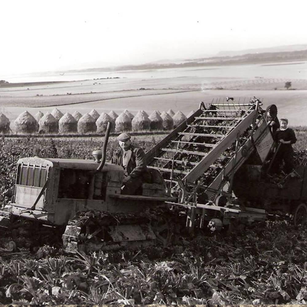 harvesting at logie farm