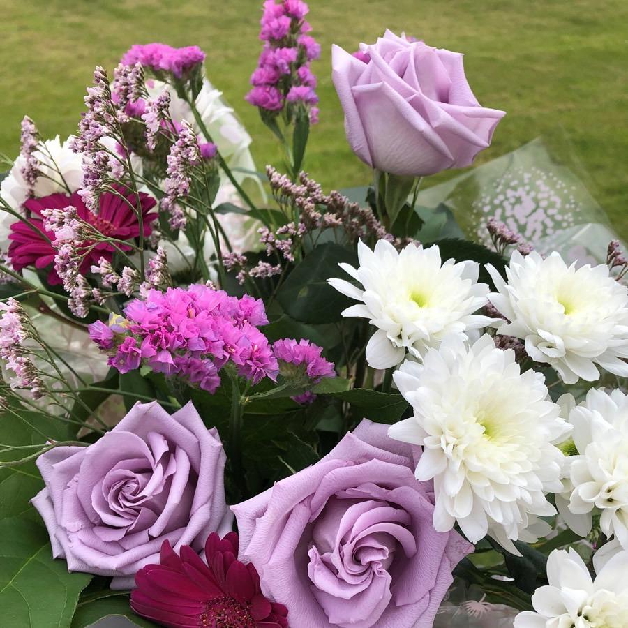 logie farm snug flowers